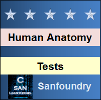Human Anatomy & Physiology Tests